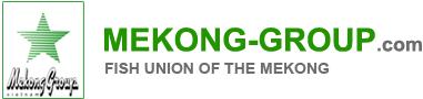 logo-mekong-group